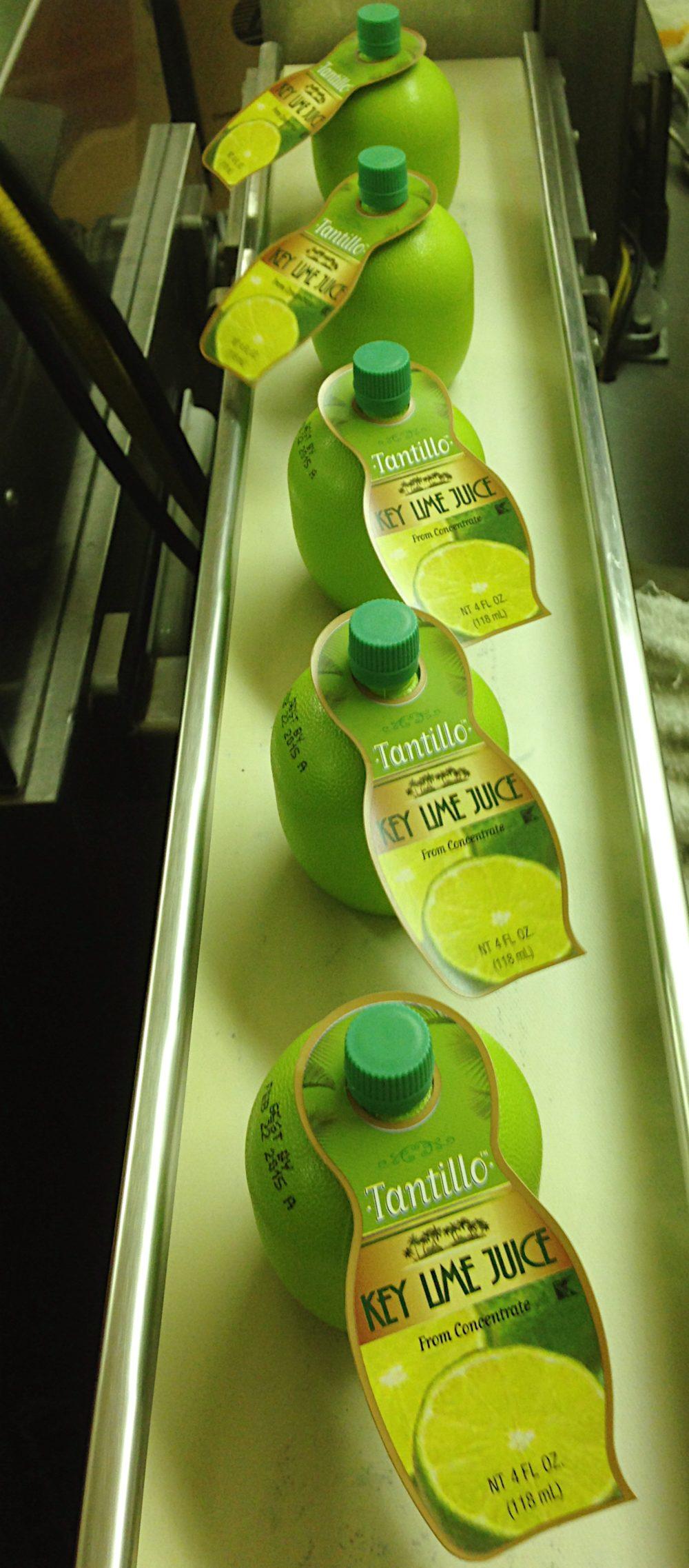 Key Lime Juice… Coming Soon!